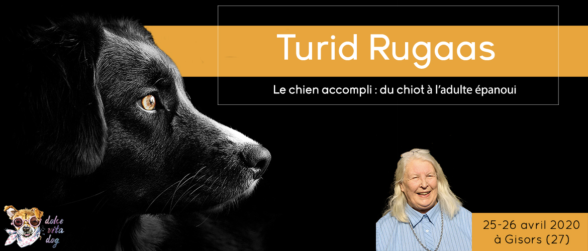 Turid Rugaas - Le chien accompli - séminaire Avril 2020
